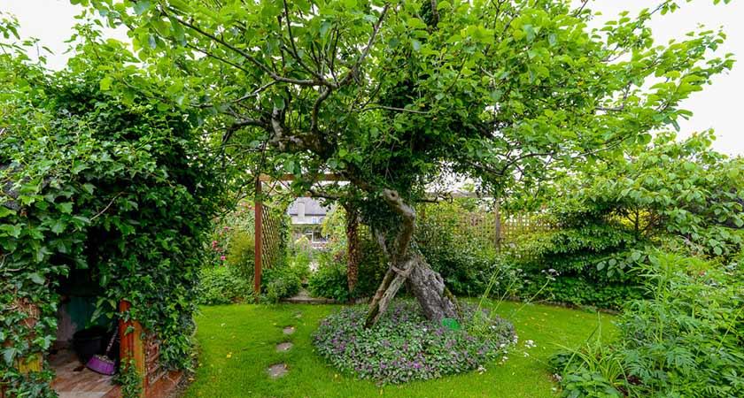 riverside park hotel wexford garden trails