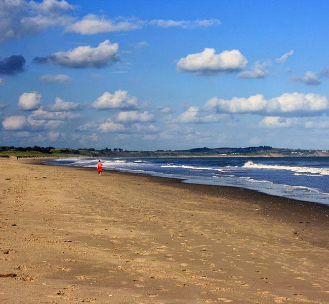 local attractions curracloe beach